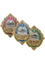 Engine driver of Ukrainian Railway Service medal